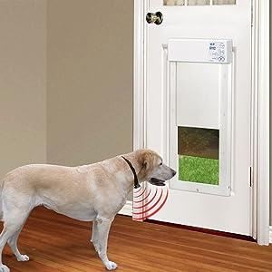Amazon Com Power Pet Large Electronic Pet Door Px 2 Pet