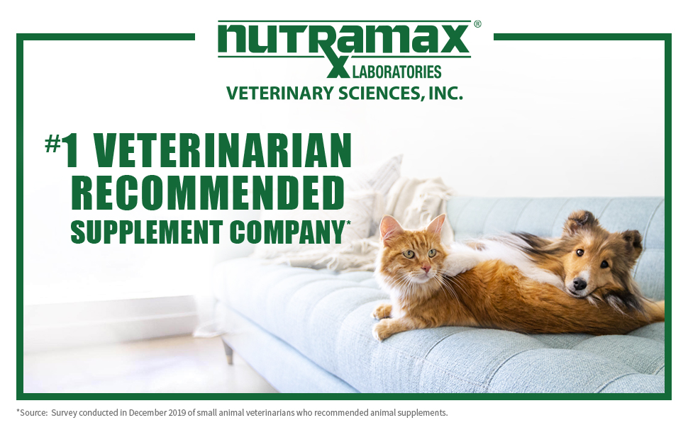 Dasuquin from Nutramax Laboratories Vet Sciences, the #1 Veterinarian Recommended Supplement Company