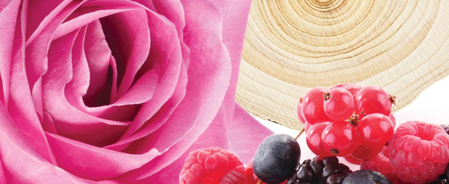 Jimmy Choo Blossom Fragrance Notes