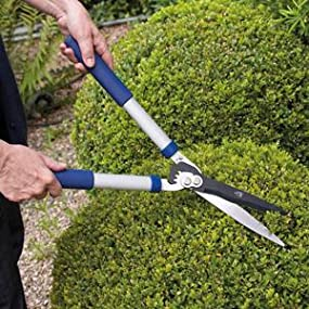 best value hedge shears