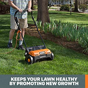 Keeps your lawn healthy by promoting new growth