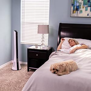 LivePure Blade Tower Fan in Bedroom