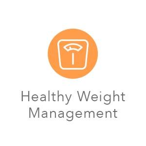 Natural cat food;Dry cat food;Cat food dry;Adult cat food;Cat food dry;Sensitive stomach cat food