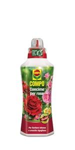 Concime liquido rose