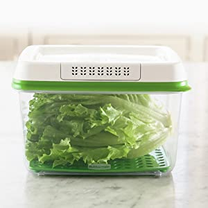 Vegetables Storage Containers Amazon rubbermaid freshworks produce saver food storage small 25 cups workwithnaturefo