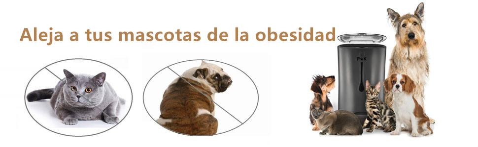 Alimentador autom/ático de mascotas grabaci/ón de voz 6.5L negro Alimentador de dispensador de alimentos programable programado para perros Cat Auto para gatitos peque/ños y medianos para mascotas