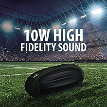 10W Fidelity Sound