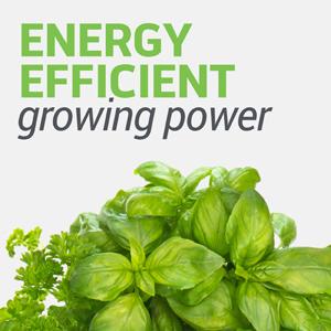 Energy Efficient Growing Power