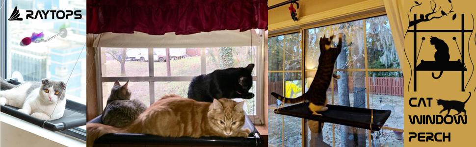 Amazon.com: Hamaca para ventana de gato, perca, perca para ...