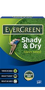 EverGreen Shady & Dry Lawn Seed