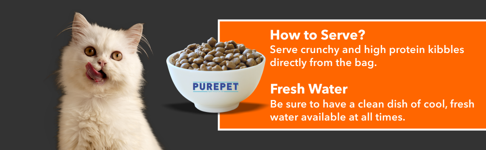 HOW TO SERVE ?