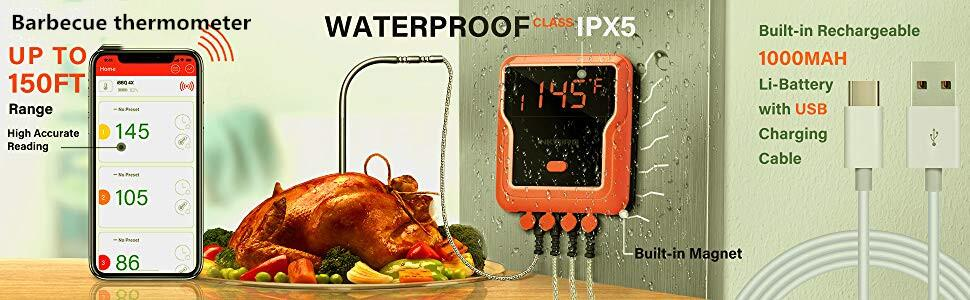 IBT-4XP thermometer