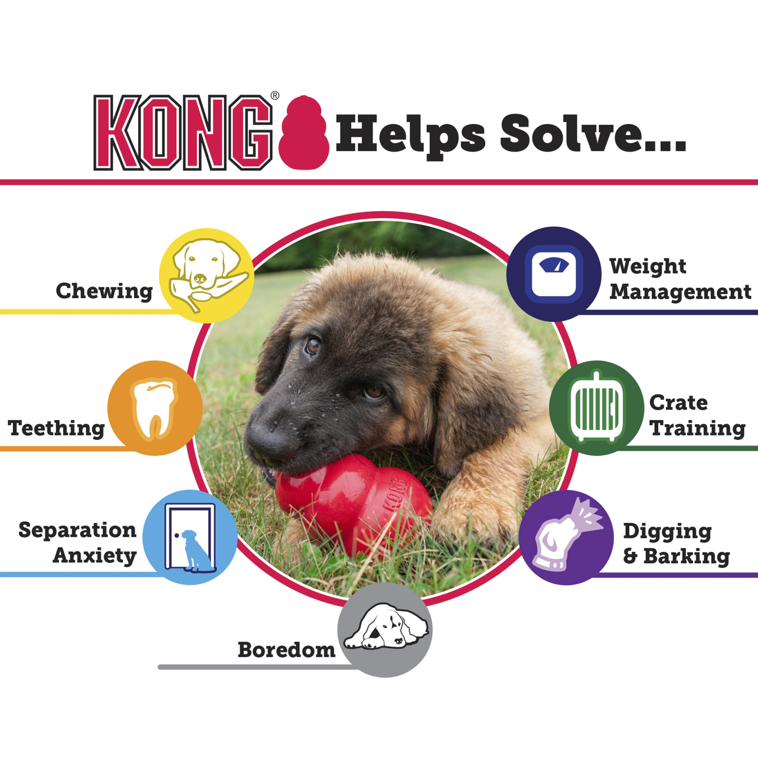 Amazon.com : KONG Classic Dog Toy, Large, Red : Pet Chew