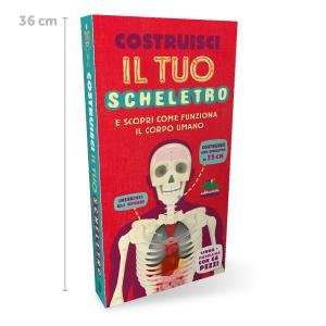 Grafix Esplora il tuo corpo-COSTRUIRE imparare Muscolo dello Scheletro Modello 7+