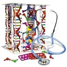 Ciencia y Juego - El Cuerpo Humano (Clementoni 550890