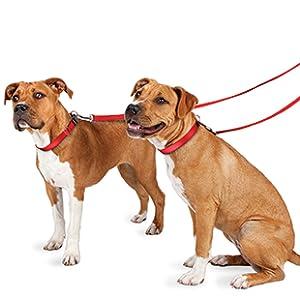 petsafe dog cat pet nylon leash