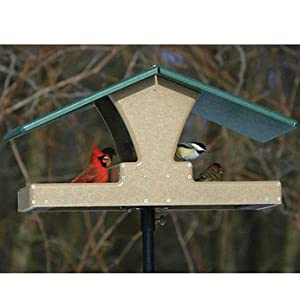 Birds Choice Double Hopper Feeder