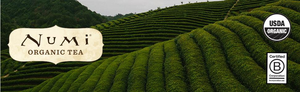 numi organic green tea loose leaf certified b corporation imperial jasmine dragon pearls flowering