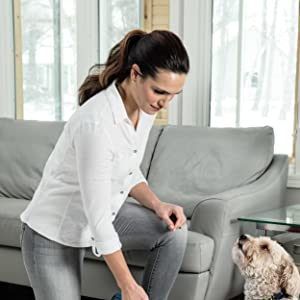 carpet cleaner, shampooer, deep carpet cleaner, portable deep cleaner, pet stain, pet mess, formula