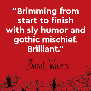 Sarah Waters, Plain Bad Heroines