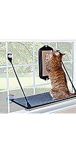 Cat;window;perch;hammock,sill;kitty;feline;pad;bed;mount;sun;bask;pad;interactive;view;scratch