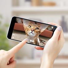 Pet camera monitoring