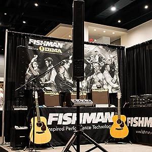 fishman neo d magnetic soundhole pickup single coil musical instruments. Black Bedroom Furniture Sets. Home Design Ideas