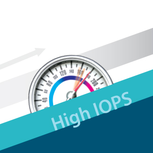 High IOPS. Speed up loading times.