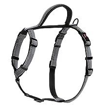 halti walking harness