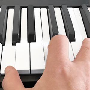 Impact LX25+ Keyboard