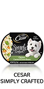cesar simply crafted wet dog food chicken carrots green beans, soft dog food, food for dogs