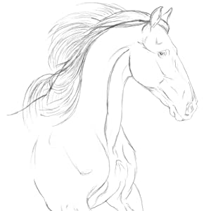 With the same pencil, further define the shape of the horse. Start building on the lines