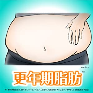 ラット アクリア 口コミ ビス