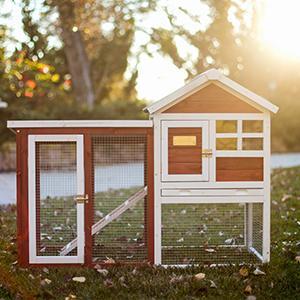 stilt house rabbit hutch advantek
