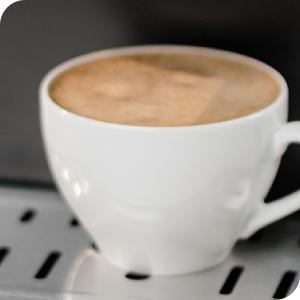 zelmer; ekspres do kawy; ZCM7255
