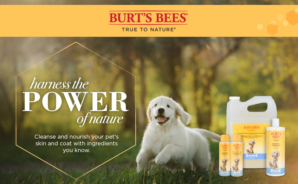 Burts Bees Puppy shampoo and conditioner burt's bees for puppies