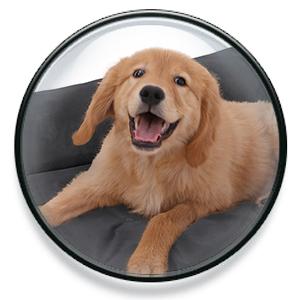 FEANDREA Cama Cómoda para Mascotas, Casa para Perros, Sofá para Perros, 100 x 70 cm PGW28H