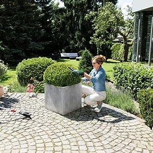 Bosch Home and Garden 0600833105 Bosch Tijera Jardín ISIO ...