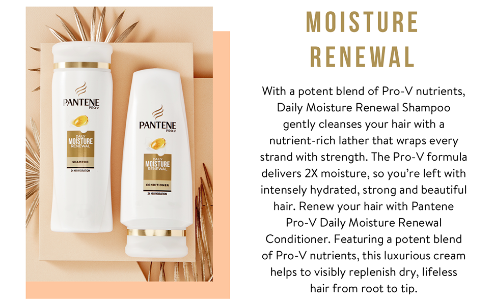 moisture renewal for dry damaged hair argan hair hydration hydrating shampoo conditioner dual pack