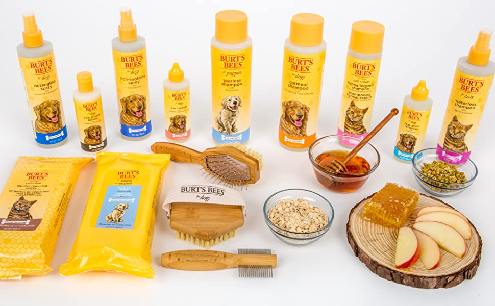 burts bees for dogs