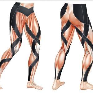 endurance generator muscle drawing