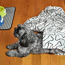 pet blankets,for dogs,for cats,for car,for bed,for couch,warm blanket for pet,dog blankets and throw