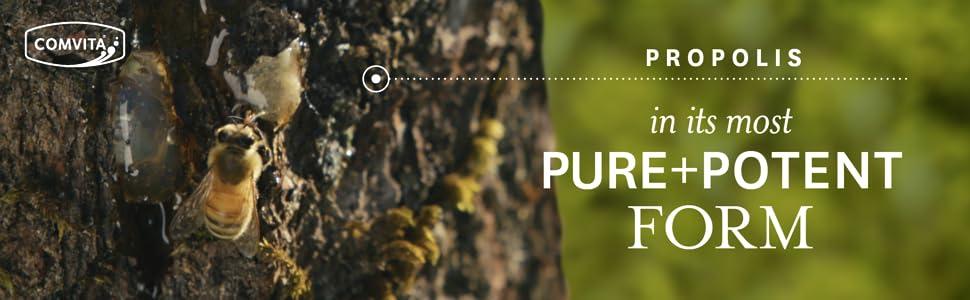 Comvita Propolis Throat Spray, UMF 10+ Manuka Honey, Natural Throat &  Immune Support, 0 7 fl oz