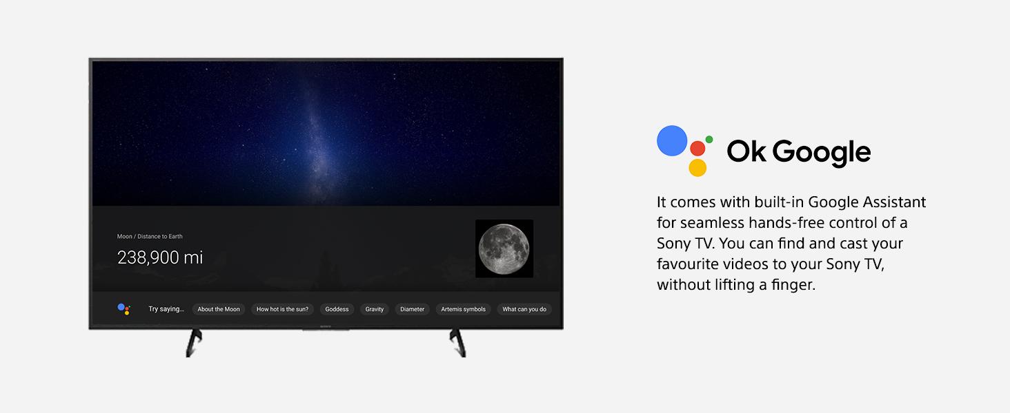 Google Assistant Built-in