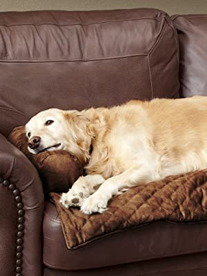 Pet Sofa Covers That Stay In Place