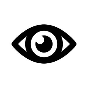 Perfect eyewitness, Cobra, Cobra Dash Cams, Dash Cams, Car Dash Cams