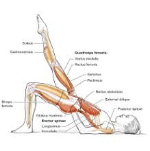 Pilates Anatomy by Rael Isacowitz and Karen Clippinger