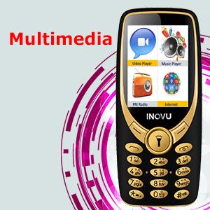 internet, bluetooth, camera, vibrator, wireless fm, music player, video player, multi language phone