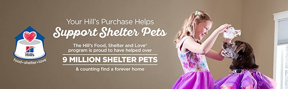 9 Million Shelter Pets And Counting