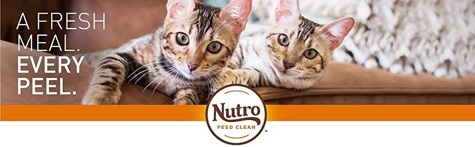 A Fresh Meal Every Peel, Nutro Feed Clean, Wet, Cat, Food, Cuts in Gravy, Chunks, Meat, Protein